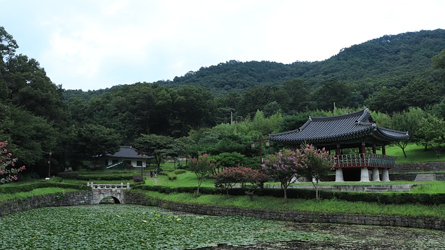 Korejské zahrady